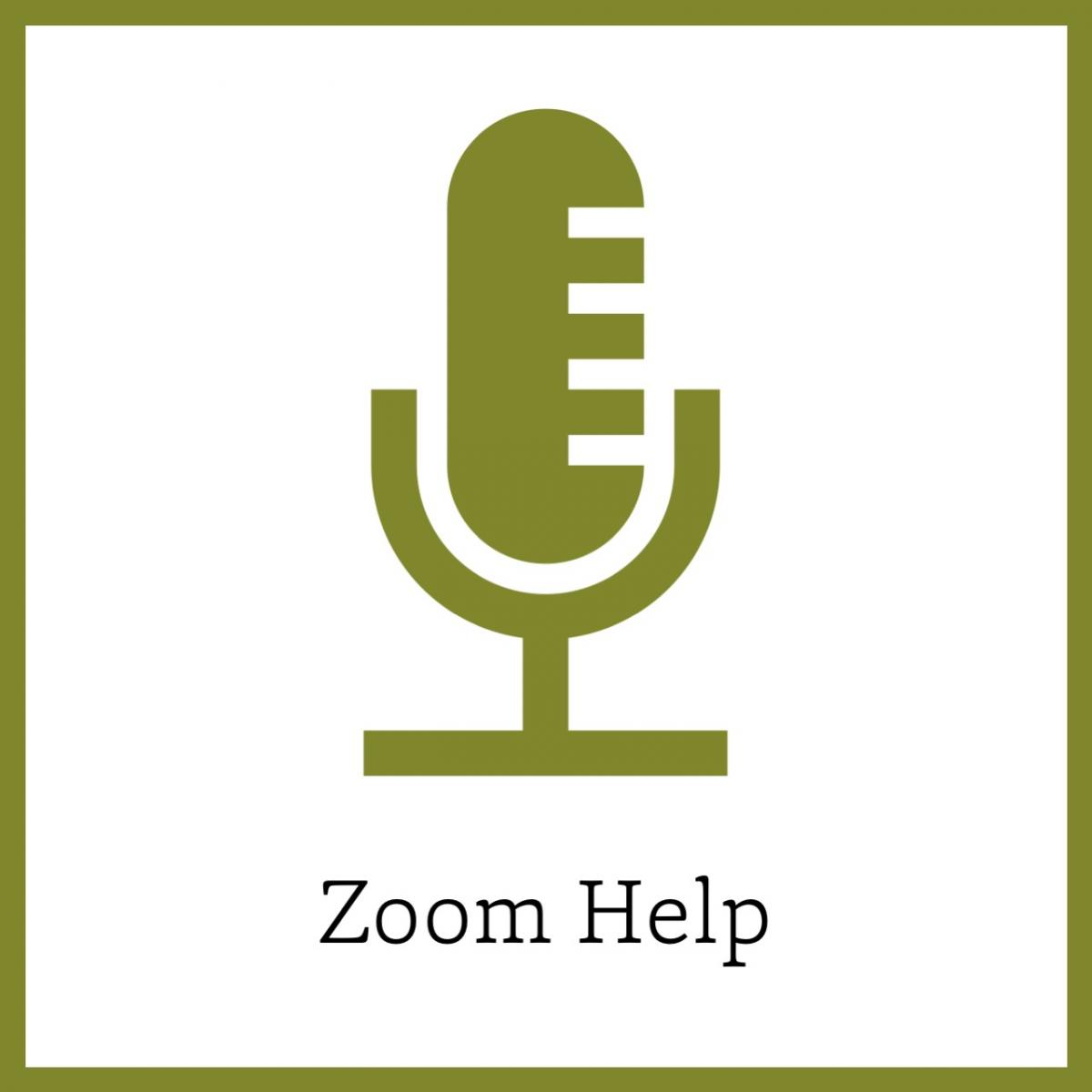 Zoom help icon link